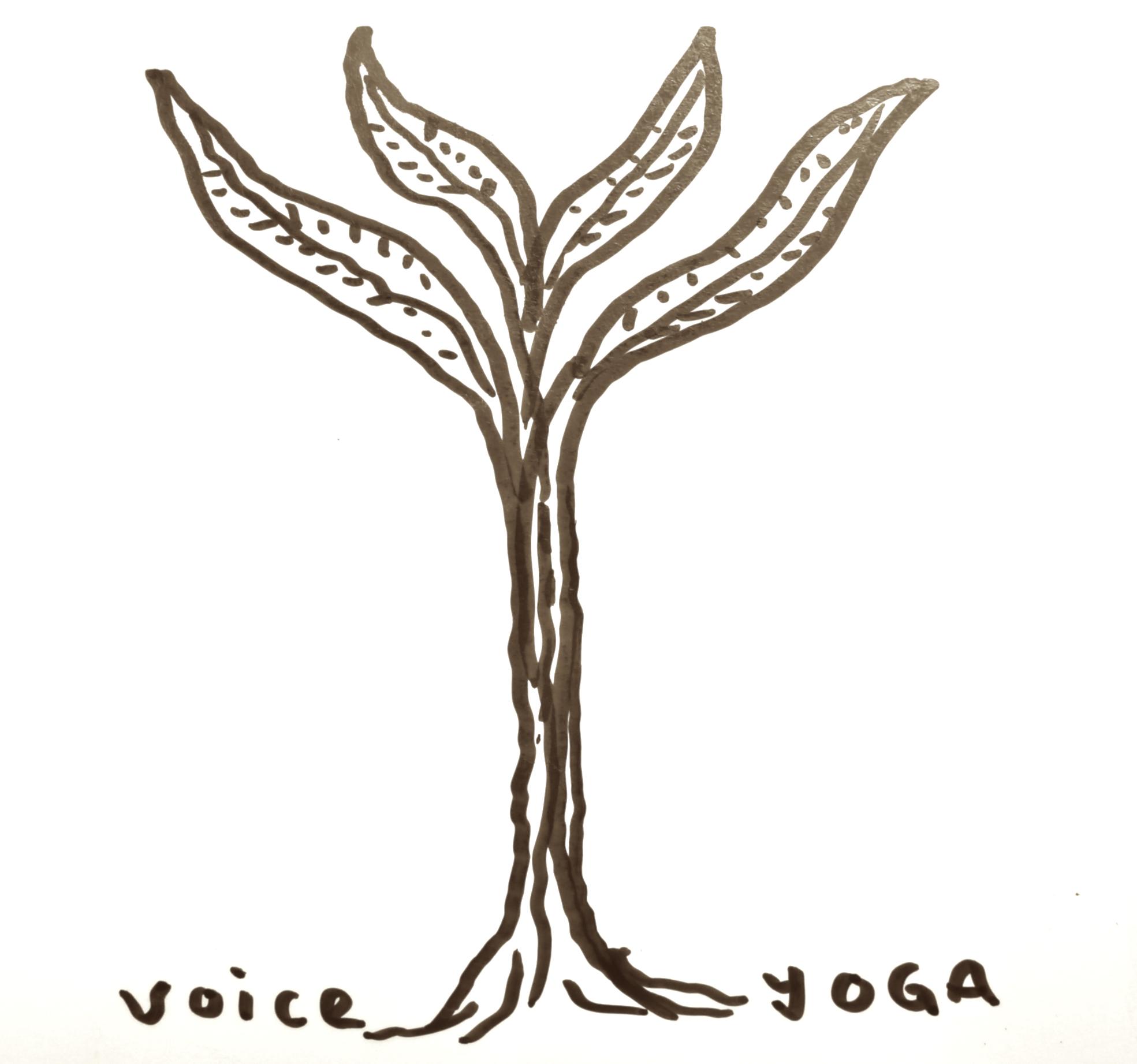VoiceYoga3